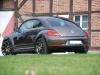 beetle-91